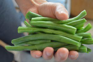 4-green-beans-measure