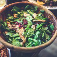 Paleo Diet or Vegetarian Diet?