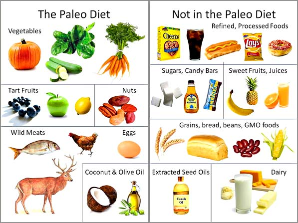 paleo and vegan diet